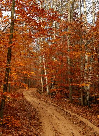 Autumn Trail - Hiawatha Sportsmens Club, Michigan
