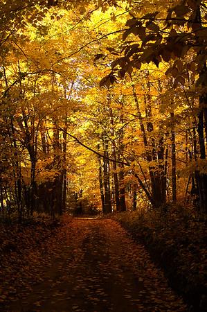 Autumn Trails - Naubinway, Michigan