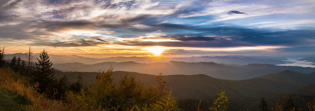 Great_Smoky_Mountains_National_Park; GSMNP; Smokies; CadesCove; Cades_Cove; Cades; Cove; Bears; Black_Bear; BlackBear; cub; cubs; black bear cub; Bear; sunrise; sunset; Foothills Parkway; waterfalls; waterfall; tremont; laurel creek; hiking; Sparks_Lane; Sparks; Lane; Hyatt_Lane; HyattLane; Hyatt; white_tailed_deer; whitetaileddeer; deer; buck; bucks; fawn; otter; otters; riverotter; river_otter; north_american_river_otter; north american river otter; birding; birds; ducks; migratory ducks; eagle; eagles; eaglet; little river; townsend; east_tennessee; east tennessee; tennessee; national_parks; clingmans dome; newfound gap; hiking the smokies; birding east tennessee; kayaking; kayak; cades cove loop road; loop road; Owl; owls; barred owl