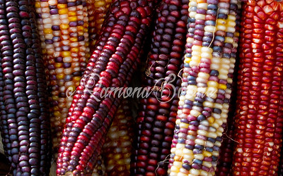 3. Autumn Corn
