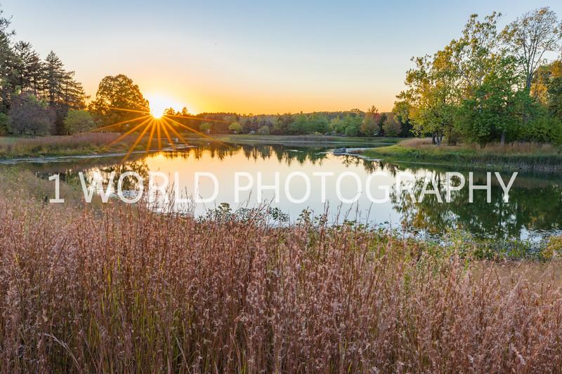 Morton Arboretum Fall 2017-142-3.jpg