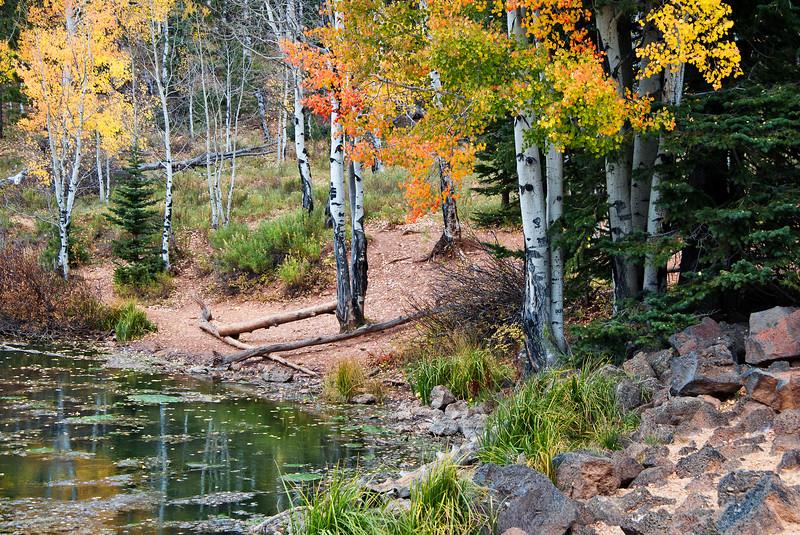 Aspen Mirror Pond