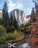 El Capitan and the Merced River  11/7/2020