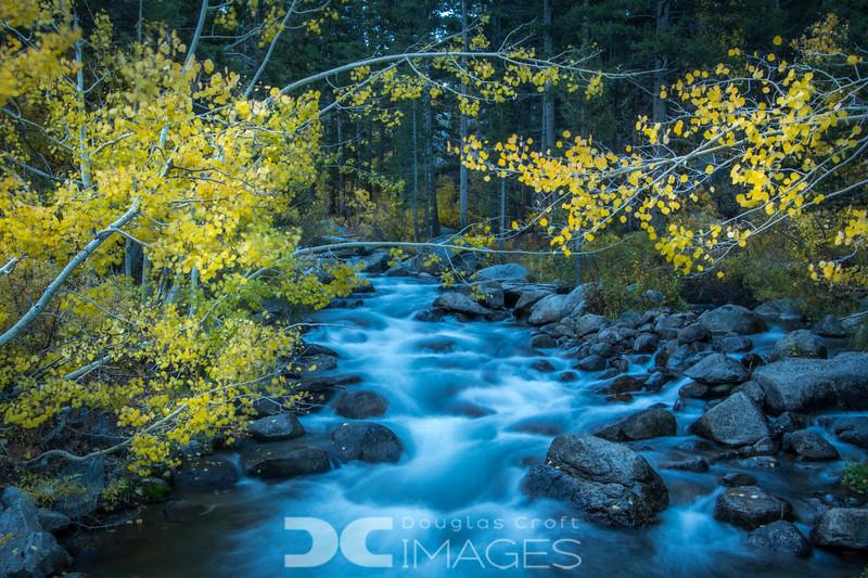 Autumn at South Bishop Creek