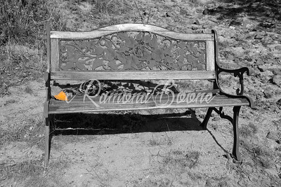 10. Leaf on Bench