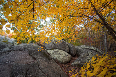 Images of Autumn at Elephant Rocks State Park