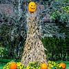 14. Pumpkin and Cornstalk Scarecrow