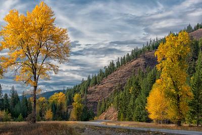 Autumn Highways