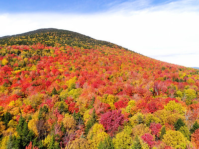 Foliage on West Kennebago Mountain