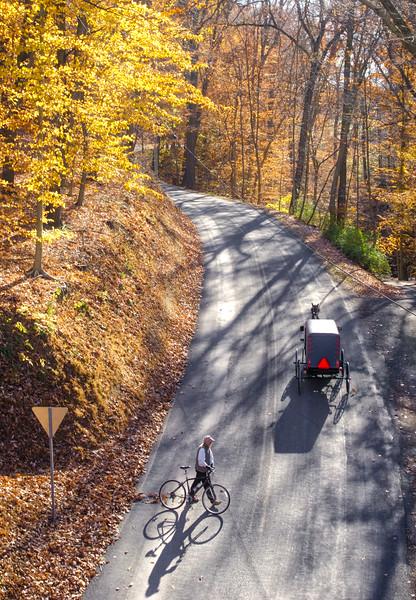 1102 - Autumn 2016 - ELGT Hollow Road (p)