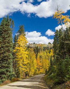 8. Colorado Autumn