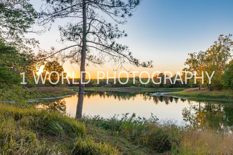 Morton Arboretum Fall 2017-140-20.jpg