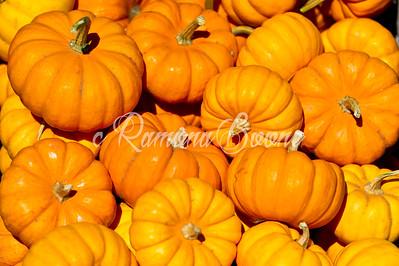 1. Pumpkins