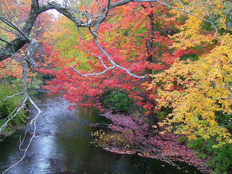 Brookline, NH