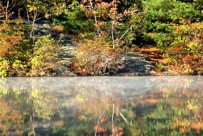 Misty shore line