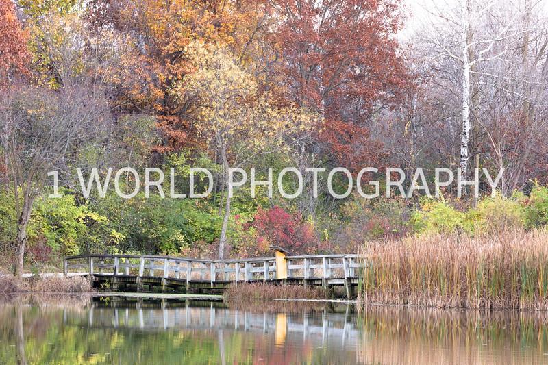 20161105Herrick Lake FP183--7.jpg