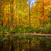 Autumn foliage reflecting in a small pond in the Welsh Mountains near New Holland, PA.