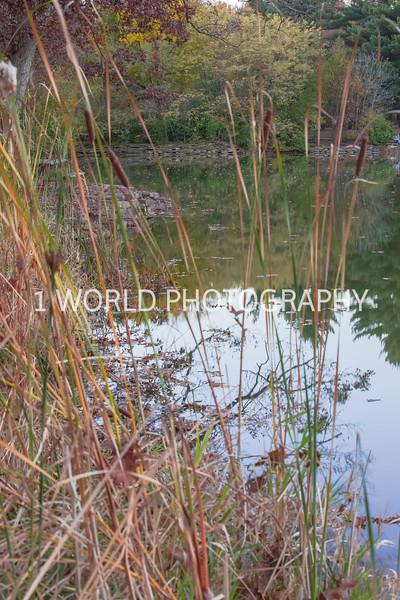 Herrick Lake FP Fall '16-3.jpg