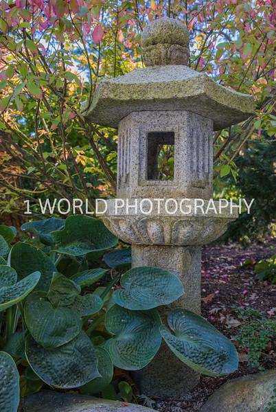 Anderson Japanese Gardens26026.jpg
