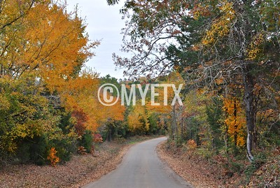 Autumn on the Back Roads