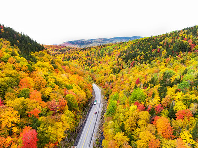 Foliage on the road into Rangeley.