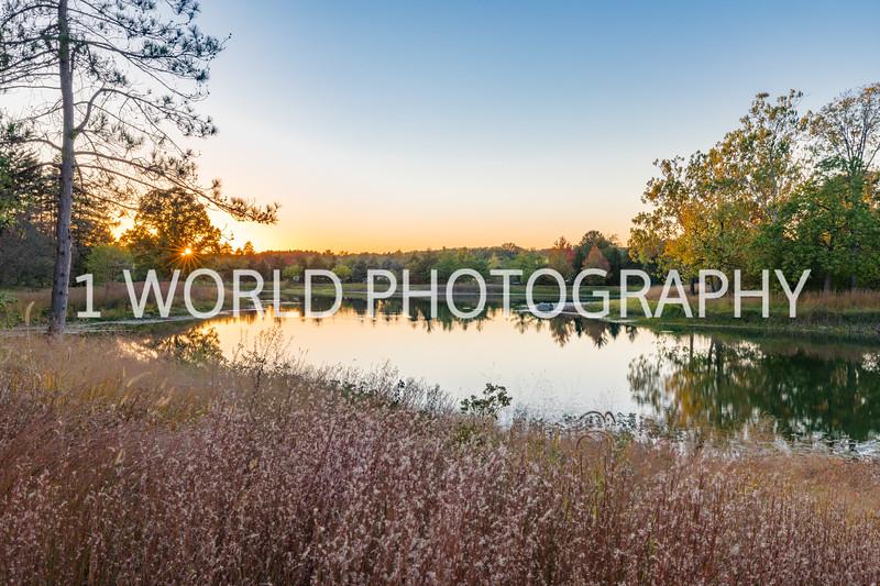 Morton Arboretum Fall 2017-141-11.jpg