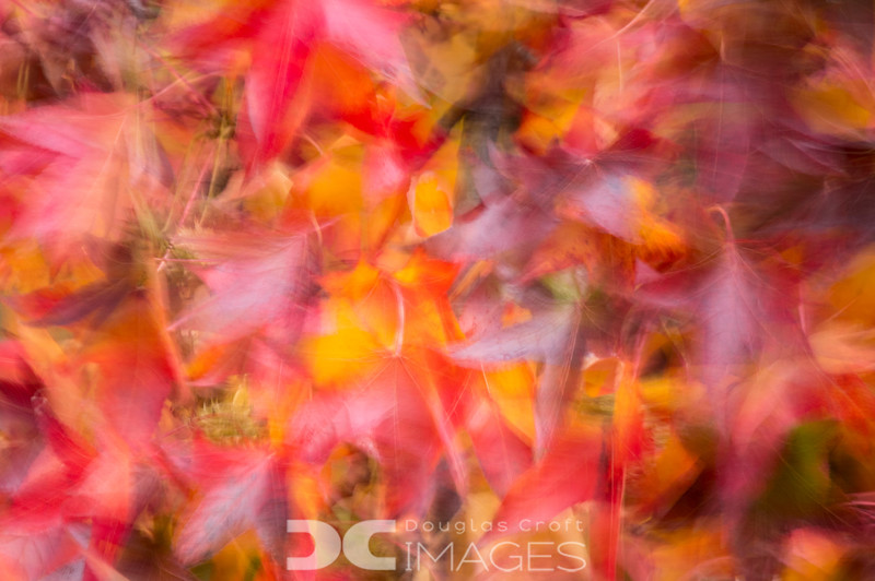 Abstract Color