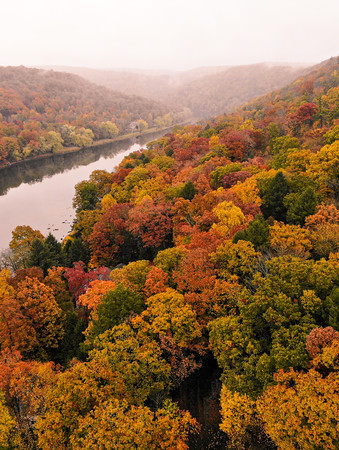 Fall Colors on River
