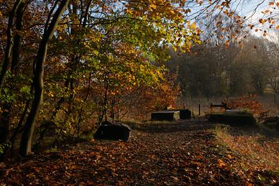 The 'Ginny Track'_Grove Lane, Padiham