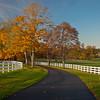 Autumn Driveway, Topsfield, MA