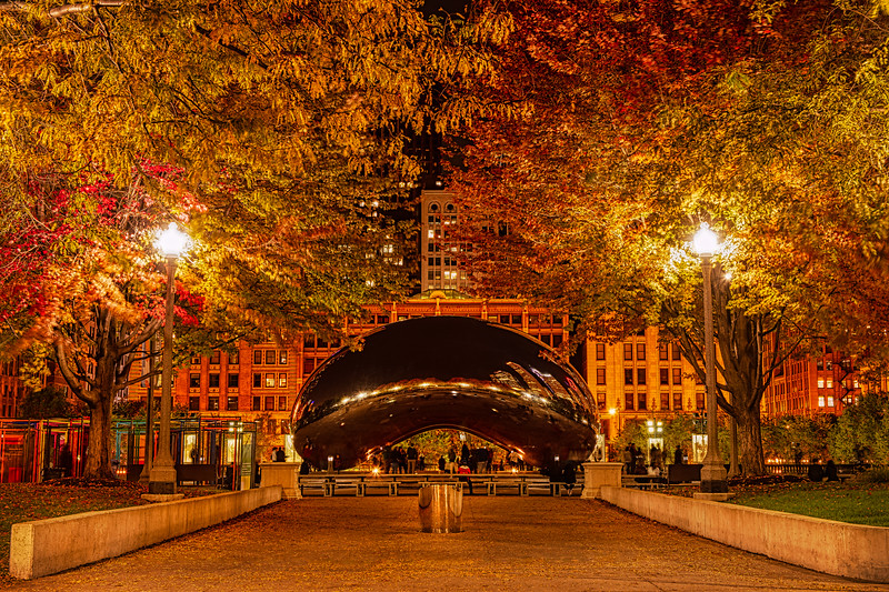 Autumn Evening at the Bean