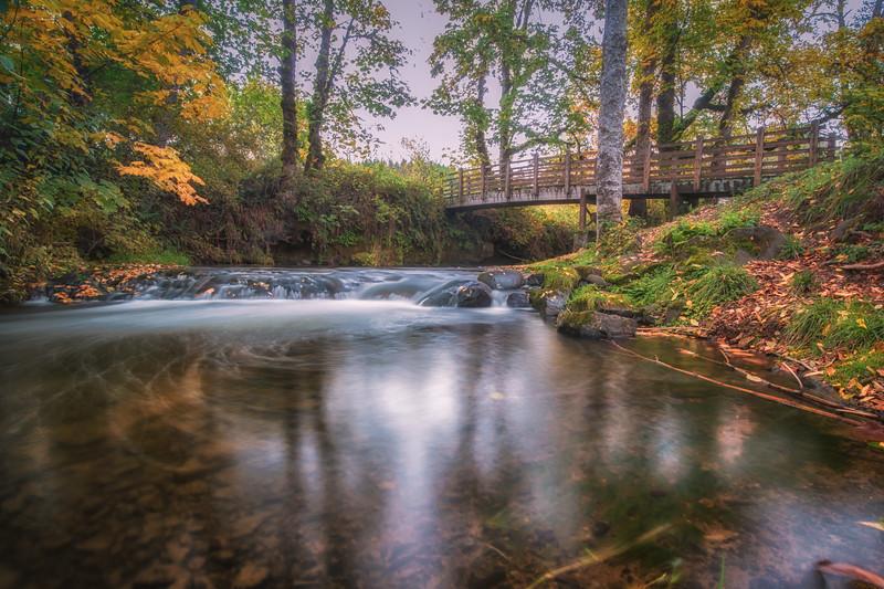 Creek at Larwood Covered Bridge in Scio, OR