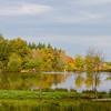 automne_11-11-01_11114