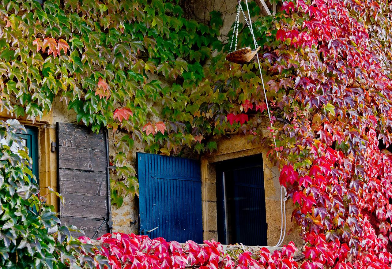 automne_11-10-29_10964
