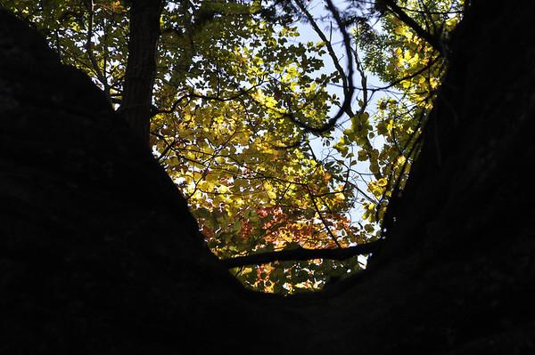 2011-Autumn-StarvedRock