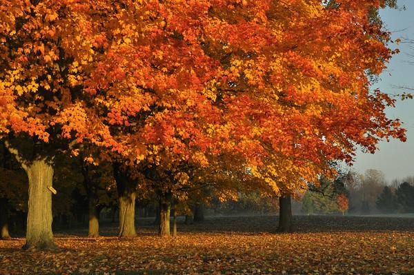 2012-Autumn-Michigan-Ontario