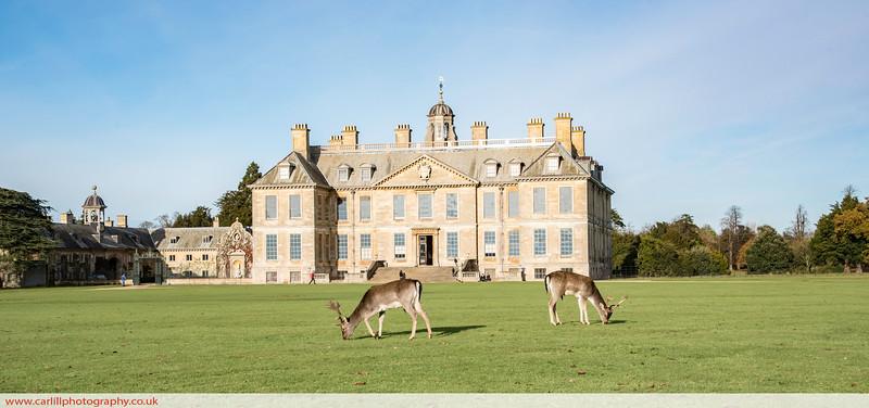 Autumnal walk at Belton House