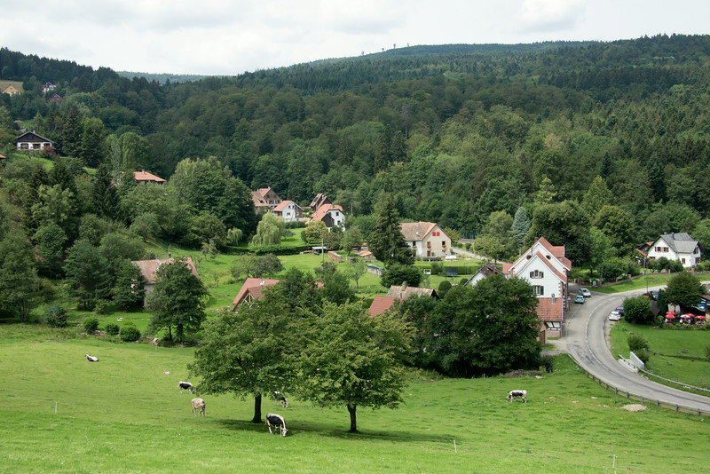 Après le passage du col de Kreuzweg, les paturages de Neumelkerei
