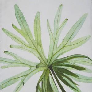 Open Arms IV ( green leaf)-Jardine, 30x30 canvas