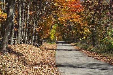 West Virginia - Spruce knob