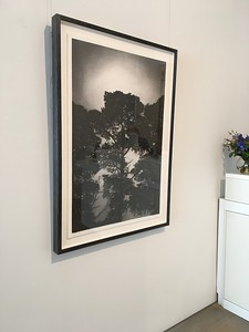 Railway Pines, charcoal on paper framed 123 x86cm