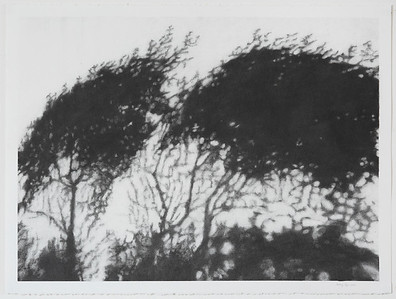 Hopkins River Shadow #3 , charcoal on paper image 52 x72 cm  Framed