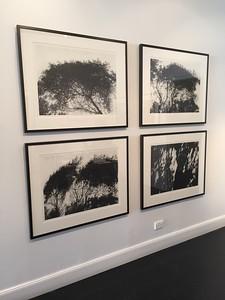 Installation charcoal on paper Framed Hopkins River Shadow 1-3 Framed 73 x92cm