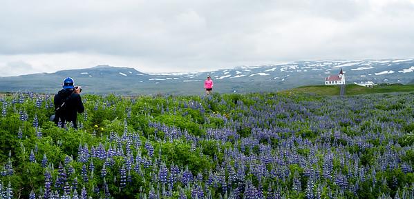 Iceland-7443