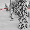 Avalanche Gulch_Mt. Shasta-3.jpg