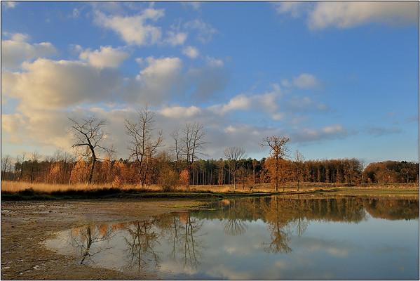 Natuurpunt Averbode - Bos & Heide