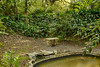 Restful spot in the Sunken Gardens in Avery Island's Jungle Gardens.
