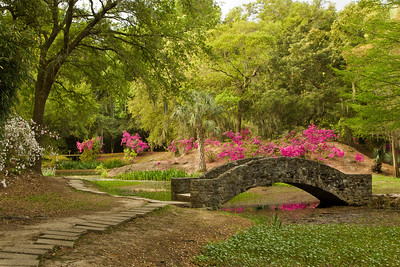 Bridge in Asian Garden that surrounds the Buddha in Avery Island's Jungle Gardens.