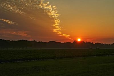 Sunrise over the Pepper Fields.
