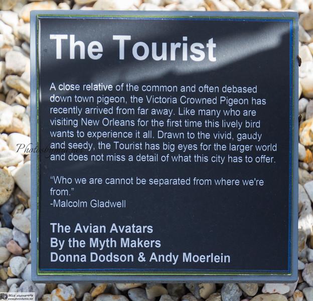 AA9_Tourist Description